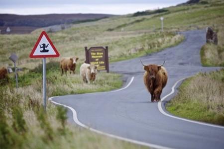 Las islas de Skye en Escocia y Skylands se hermanan para celebrar la llegada de los Swap Force de Skylanders