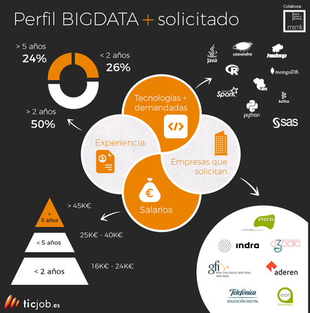 Infografia Perfil Big Data Ticjob Es