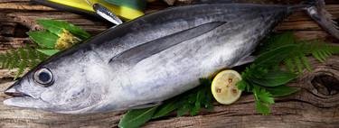 El bonito del norte, un pescado en todo su esplendor más allá del marmitako (y otras cuatro recetas para que brille)