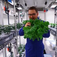 Acabamos de cultivar una lechuga en el lugar más inhóspito del mundo: el primer paso para poder comer tomates en el espacio