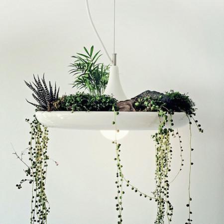Lámparas colgantes con jardineras