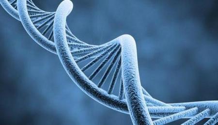 Las cifras más curiosas del ADN