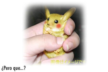 En venta Pikachu a 637 millones de euros la unidad