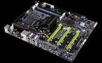 Nuevo NVidia nForce 780i SLI MCP