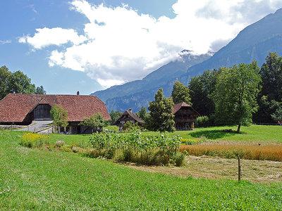 Mucho más que fondue y chocolate: 11 especialidades suizas que merece la pena probar
