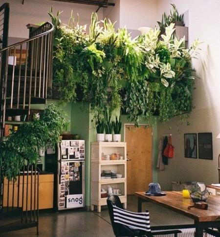 Gardens Indoor