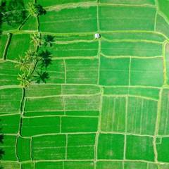 Foto 10 de 14 de la galería fondos-de-naturaleza-1 en Xataka Android