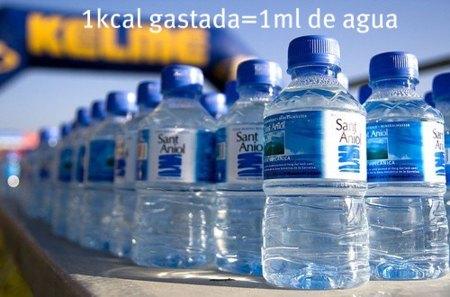 Calcula el agua que necesitas después de entrenar