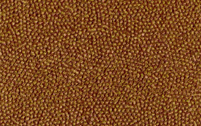 Nanopartículas de polímero