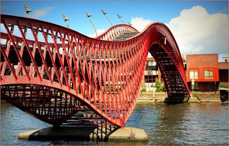 Puente Python Amsterdam Paises Bajos