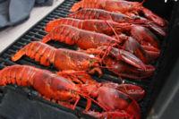 ¿Sabes por qué la langosta y el bogavante se vuelven rojos al cocinarse?