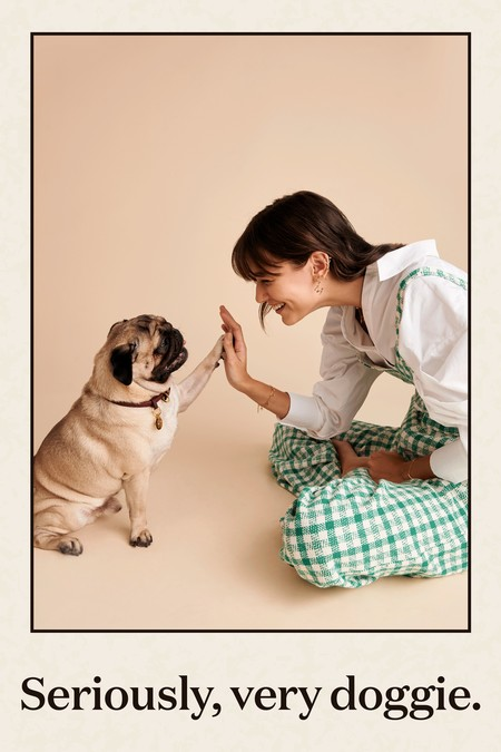 P D Paola Dog 01