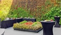 Un jardín colgante en el patio