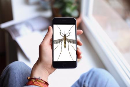 Tu móvil no evitará que este verano te piquen los mosquitos