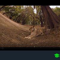 Cómo ver vídeos de 360 grados en Windows