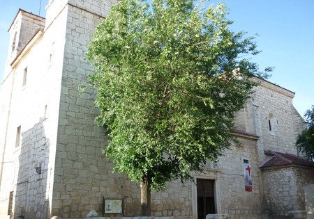 Iglesia de San Nicolás de Bari en Villaconejos