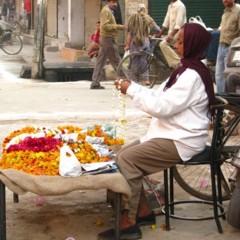 Foto 12 de 14 de la galería caminos-de-la-india-delhi en Diario del Viajero