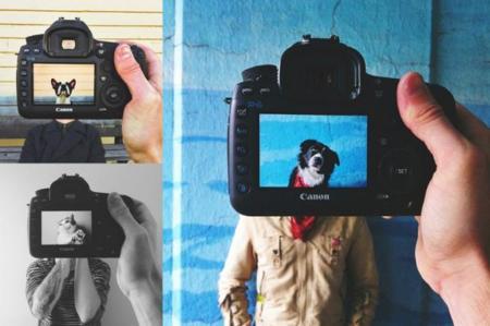 Si vas a hacerle fotos a tu mascota, al menos que sean originales