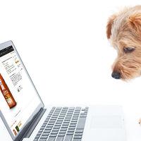 Amazon permite crear perfiles de mascotas, pero la comida la tendrás que seguir comprando tú