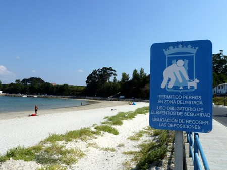 Playa Para Perros Del Concello De Ares A Coruna 768x576