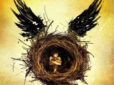 Confirmado: Salamandra publicará 'Harry Potter y el niño maldito'