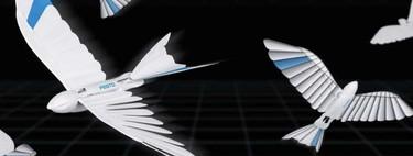 Contempla cómo vuelan estos pájaros robóticos que parecen golondrinas de una compañía alemana