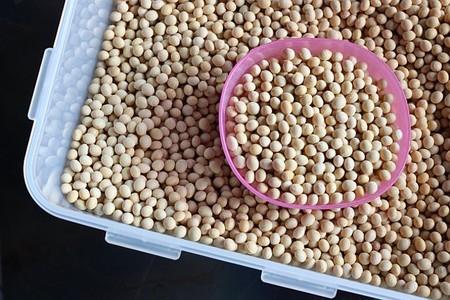 La soja, un ingrediente que debemos conocer para lograr un consumo saludable