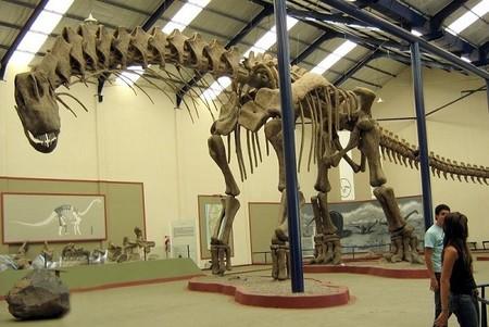 [Vídeo] Así caminaba el dinosaurio más grande conocido