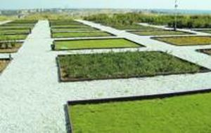 Ahorro de agua con plantaciones adecuadas al clima