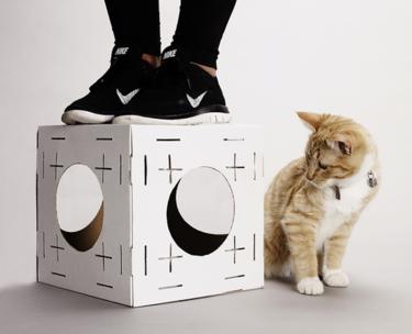 Construye una casa de cartón de ensueño para tu gato con Poopy Cat