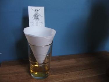 Una buena idea: Deshazte de las moscas... con estilo