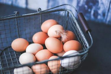 ¿Puedo encontrarme gusanos en un huevo de gallina?