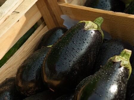 Verduras De Temporada En Mexico Que Puedes Disfrutar En Octubre Berenjena