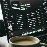 Esta web calcula cuánto espacio necesitarías para descargar tus playlists de Spotify