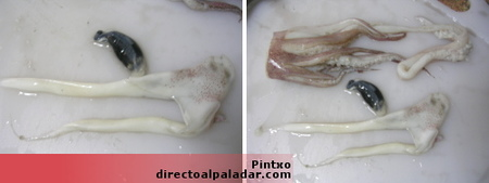 cabeza-limpia-calamar.jpg