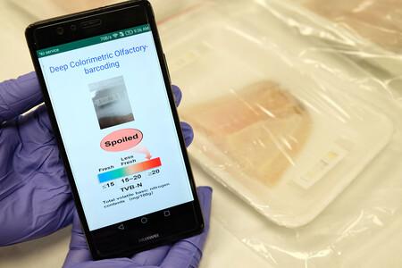"""Una """"nariz artificial"""": la idea de unos investigadores para que el móvil sea nuestro  """"soplón"""" de alimentos caducados"""