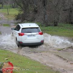 Foto 39 de 77 de la galería toyota-rav4-miniprueba-off-road en Motorpasión