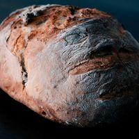 Masa madre: qué es y cómo diferenciar un pan de masa madre de uno que no lo es