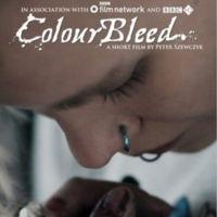 Cuatro cortometrajes rodados con DSLR y uno con una CSC
