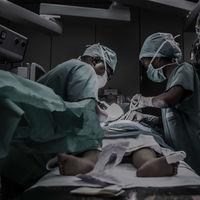 Cómo congelar un hígado sin causar daños: esta nueva técnica ha conseguido duplicar la vida útil de los órganos ante un trasplante