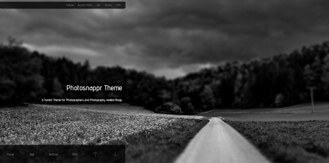 photosnapper tumblr theme